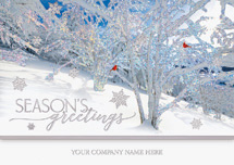 Frosted Wonders Holiday Cards